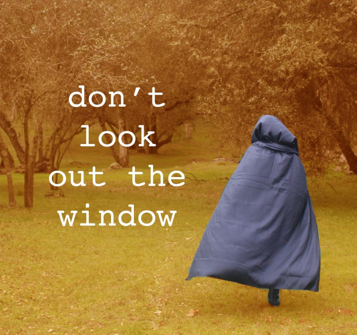 Don'tLookOutTheWindow